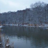 На берегах реки Химка :: Евгений Седов