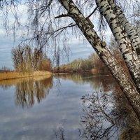 Прогулка по берегу. :: vodonos241