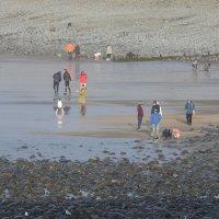 На пляже Westward Ho! :: Natalia Harries