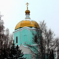 вознесенская церковь :: Дмитрий Солоненко