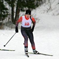 Соревнование по биатлону. :: Ольга Митрофанова