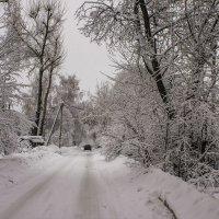 снегопад :: Петр Беляков