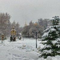 Опять в снегу. :: Анатолий. Chesnavik.