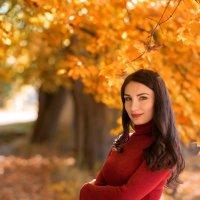 Золотая осень :: Виталий Бойченко