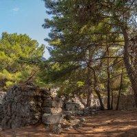 Древние руины в бухте Фаселис :: Сергей Карцев