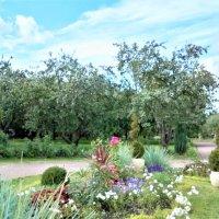 парк в Коломенском :: татьяна Блинова