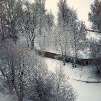 ...зима 2019 :: Pasha Zhidkov