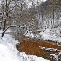 Нет...зима не сдается! :: Vladimir Semenchukov