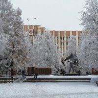 Морозный денёк на площади у Вечного огня :: Владимир Максимов