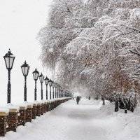 После снегопада в Москве :: Владимир Брагилевский