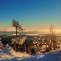 Блеск зимнего утра :: Vladimbormotov