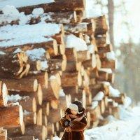 Зима в деревне :: inna15 Белевцева
