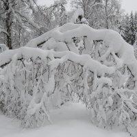 снежная арка :: Галина