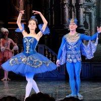 "Балет ""Спящая красавица"". Принцесса Флорина и Синяя птица :: Валерий Судачок"