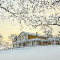 Путевой дворец Петра в Стрельне :: Владимир Колесников