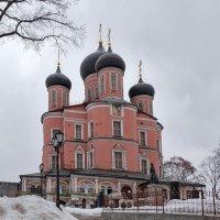 Зимнее убранство... :: Ирина Шарапова