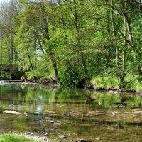 на реке :: Heinz Thorns