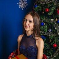 в ожидании подарков :: Дарья Молчанова