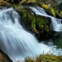 Рейнский водопад :: Elena Wymann