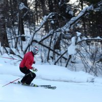 Лыжник :: Дмитрий Арсеньев