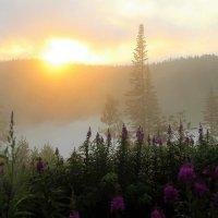 Солнце восходит в облаках :: Сергей Чиняев