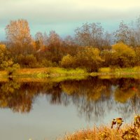 водное зеркало :: Юлия Ошуркова