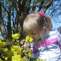 Юля, знакомится с ароматом цветов. :: Нина Акарцева