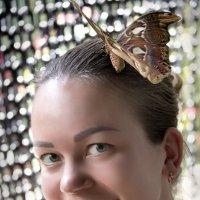 Портрет с бабочкой :: Анатолий Ш