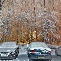 Московские дворы в феврале :: Лара Симонова