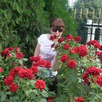 Марина среди роз. :: Нина Акарцева