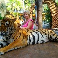 Мой любимый тигр! :: Надежда Середа