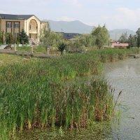 Город Ташир(Калинино) Армения :: Sergey G