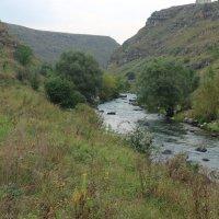 Армения.Каньон реки Дзорагет. :: Sergey G