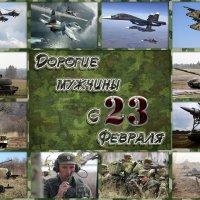 С Днём Защитника Отечества! :: Светлана Пивоварова