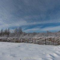 Зимний день :: Ivan teamen