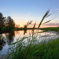 Лето...лето...лето :: Геннадий Супрун