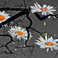 Сон в ЛЕТНЮЮ НОЧЬ (Из серии-И снятся деревьям сны разноцветные.) :: ЛЮБОВЬ ВИТТ