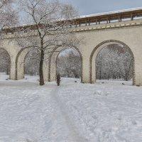 Прогулки в Зимнем Парке :: юрий поляков
