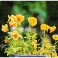 Мой сад – самый прекрасный мой шедевр.......... :: Tatiana Markova
