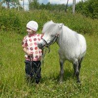 Только мы с конем по полю идем... :: Юлия Ошуркова