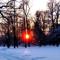 Дорога в закат :: Самохвалова Зинаида