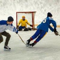 Хоккей с мячом. Играют юноши 23 февраля. :: Валентин Кузьмин