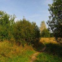 Полгода назад (начало сентября) :: Андрей Лукьянов