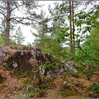 Карельские пейзажи :: Ольга Кирсанова