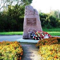Памятник Новгородцам :: Ната57 Наталья Мамедова