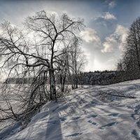Полуденные тени :: Vladimbormotov