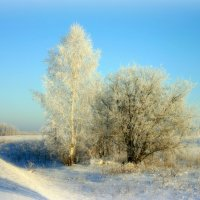 Прощай,Зима!.. :: Нэля Лысенко