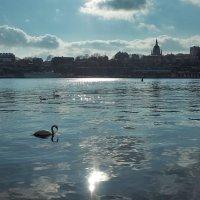 Стокгольм. Весна идет, зиме конец! :: Alm Lana
