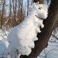 С последним днём зимы, друзья! :: Андрей Заломленков