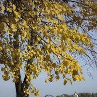 Осень, Днепр, набережная :: Татьяна Найдёнова